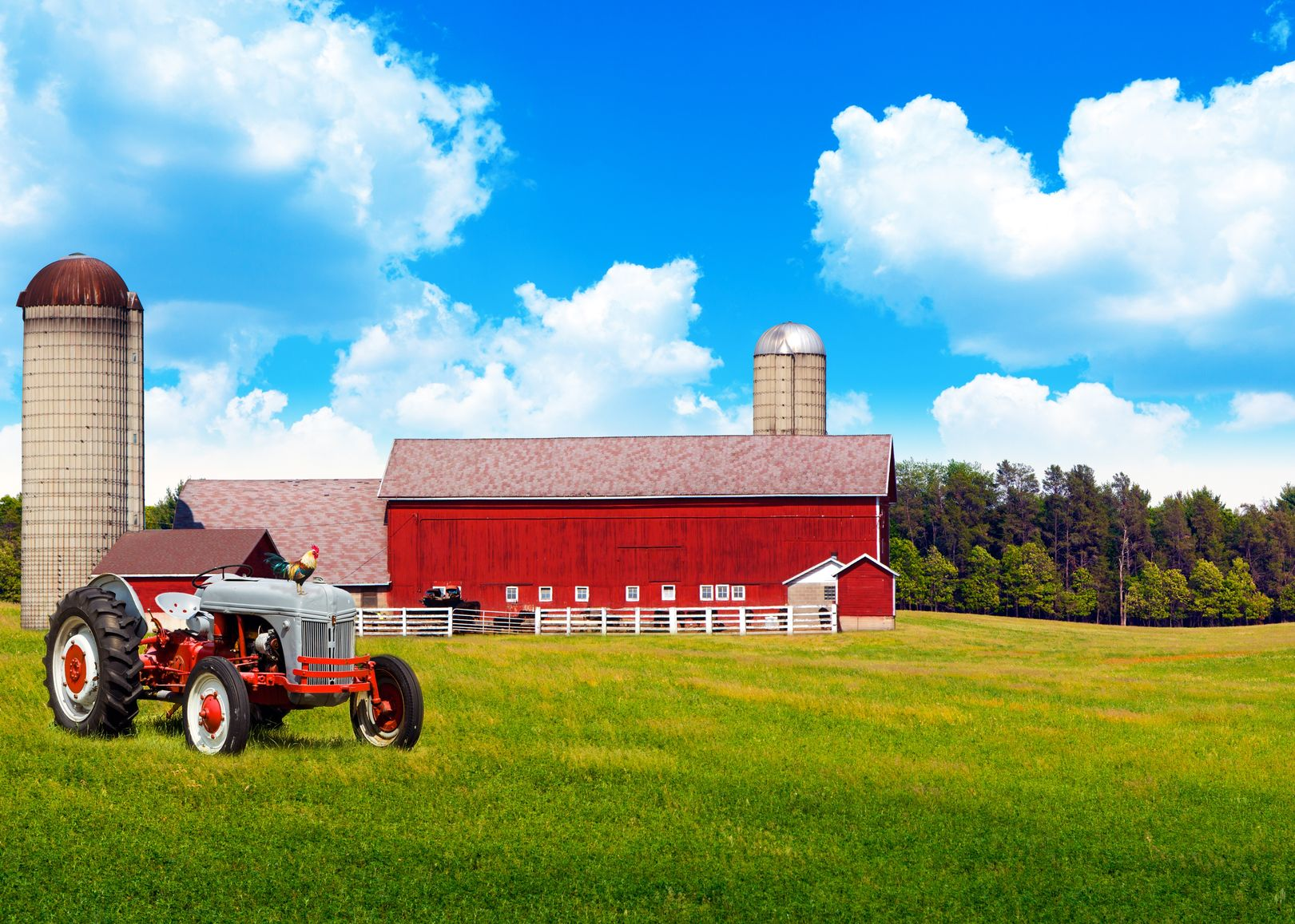 Longview, TX.  Farm & Ranch Insurance